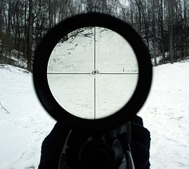 Looking through an air rifle scope at 4x magnification