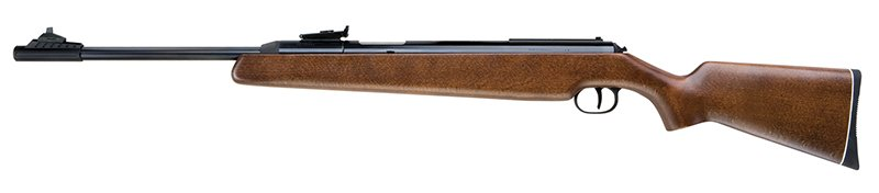 Best Air Rifle for $400 - Diana RWS 48 T06 Trigger Review
